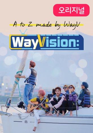WayVision (웨이비전)